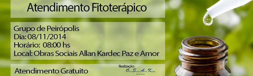 Atendimento Fitoterápico – 08/11/2014